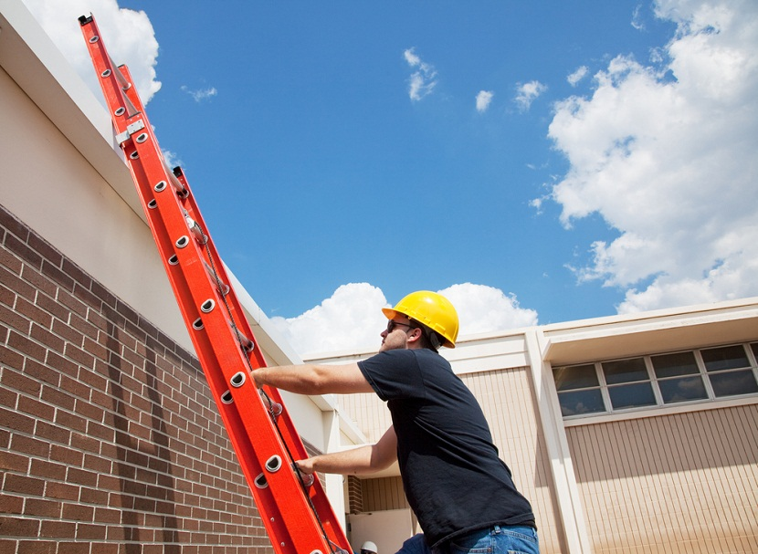 Extension Ladder in Chennai